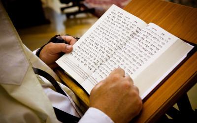 פרשת השבוע- וישלח, ספר בראשית