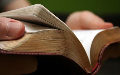 פרשת השבוע- מצורע, ספר ויקרא