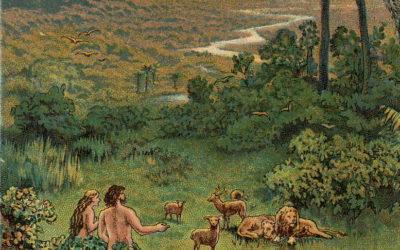 פרשת השבוע – בראשית, ספר בראשית